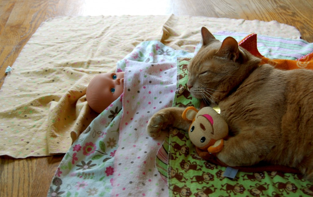 cat sleeping with baby doll