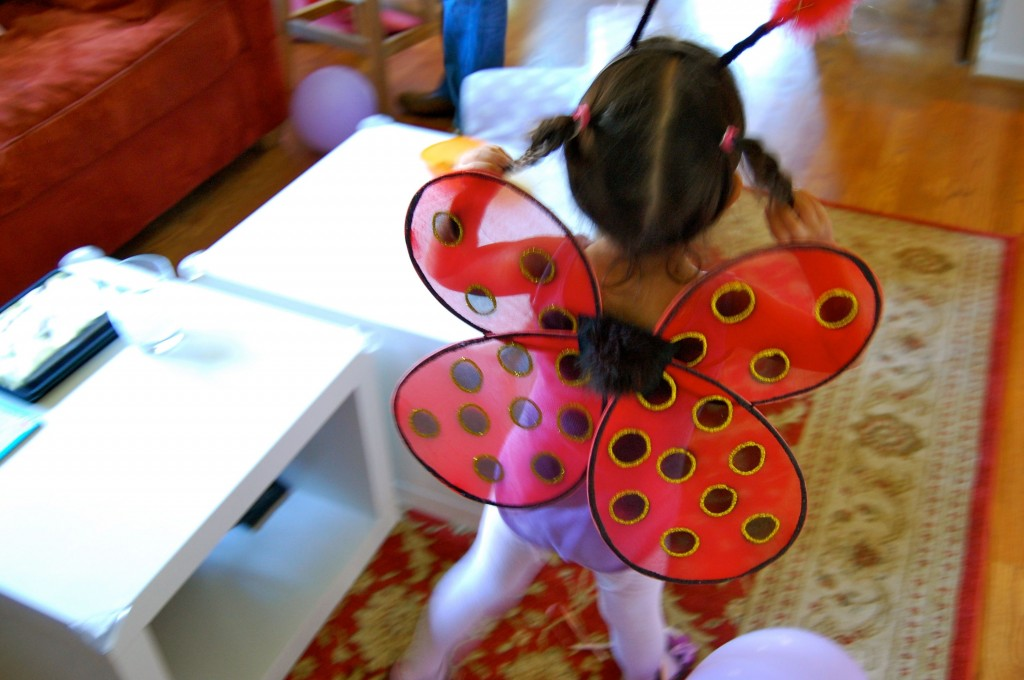 ladybug wings